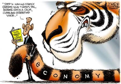 john-tiger-training-obama-dummies-economy-cole