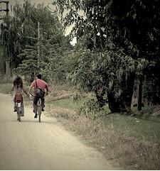 lovers-lane-together-college-bikes-hold-hands-valentine