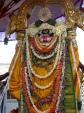 Sreenivasa_perumal-Mylapore-Brahmotsavam-Vaikasi-Festival-Garuda-Vahanam-Back