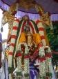 Sreenivasa_perumal-Mylapore-Brahmotsavam-Vaikasi-Festival-Garuda-Vahanam