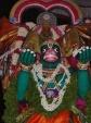Sreenivasa_perumal-Mylapore-Brahmotsavam-Vaikasi-Festival-Maruthy-Vaganam