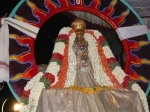 Sreenivasa_perumal-Mylapore-Brahmotsavam-Vaikasi-Festival-Sun-Vaganam-Night-Special