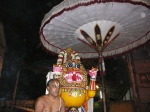 Sreenivasa_perumal-Mylapore-Brahmotsavam-Vaikasi-Festival-Yaali-Vaganam