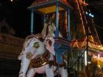 Chandigeswarar-Velli-Eswarar-Elephant-Vahanam