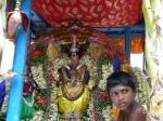 Parvathy-Vellieswarar-Ther-Float-Festival-Brammotsavam