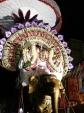 Subramaniyar-Velli-Eswarar-Elephant-Vahanam