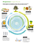 biogas_lifecycle