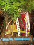 karpagambal-ambal-jadai-kapaleeswarar-temple