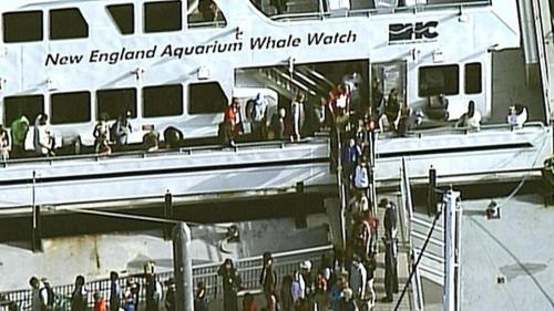 New_England_Aquarium_Whale_Watch