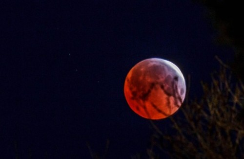 eclipse-moon-4-4-2015-Lunar_Blood_Red