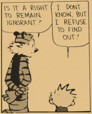 Calvin and Hobbes_Dunning_Kruger_Effect