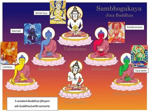 sambhogakaya-buddhas_jina_ratna_vajra_bodi_sathva_amitabhdhyani_consorts_vairochana